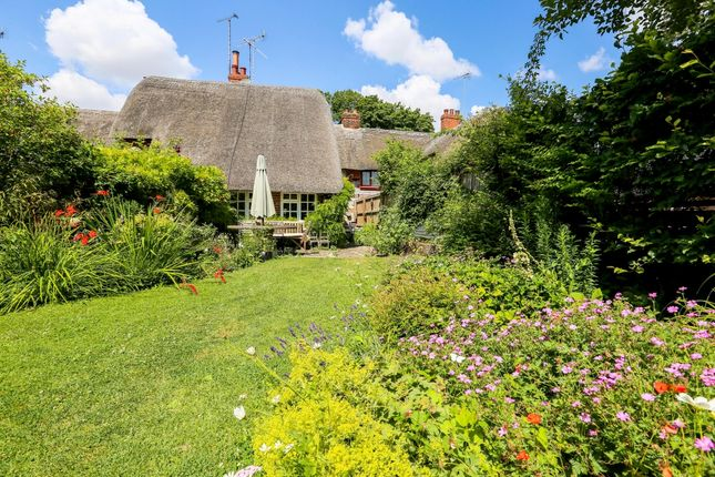 Thumbnail Terraced house to rent in Manningford Bohune, Pewsey