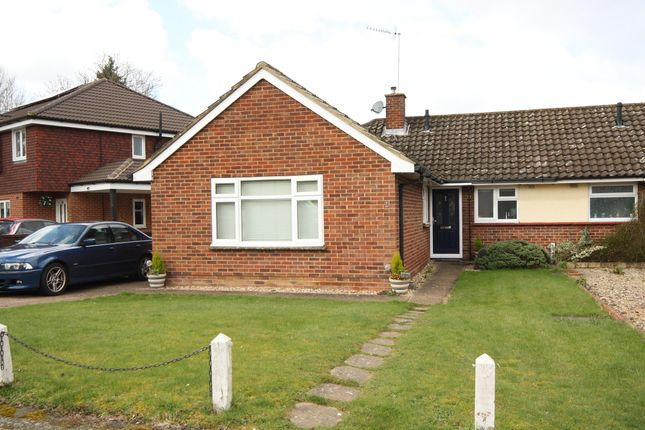 Thumbnail Bungalow to rent in Dorrit Crescent, Guildford