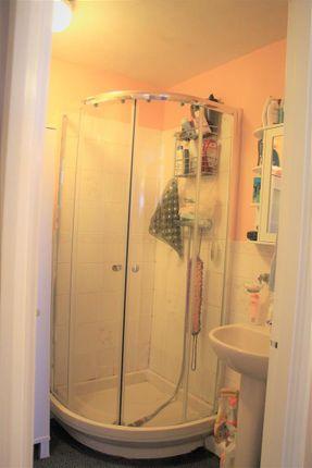 Burnham Lodge (Shower)