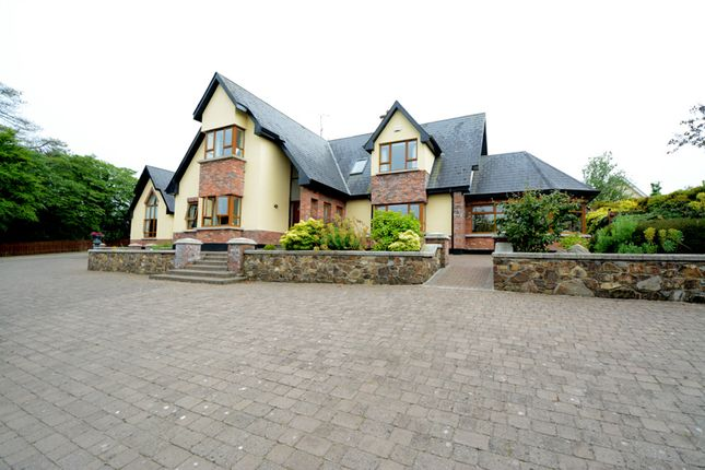 """Thumbnail Detached house for sale in """"Kalina"""", Coolree, Newbay, Y35V750, Wexford County, Leinster, Ireland"""