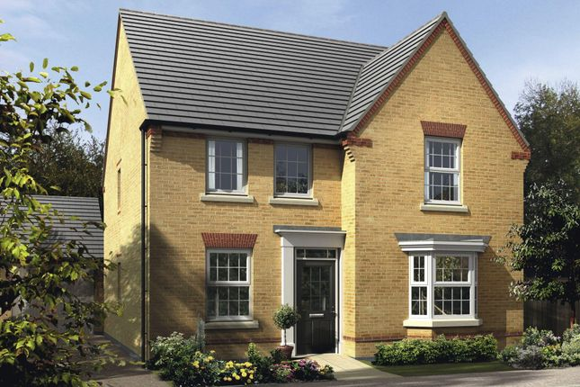 "Thumbnail Detached house for sale in ""Holden"" at Nine Days Lane, Redditch"