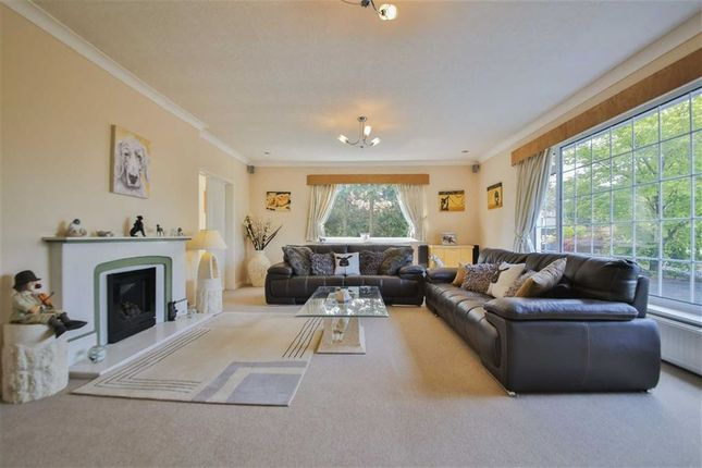 Thumbnail Detached bungalow for sale in Mill Lane, Great Harwood, Blackburn