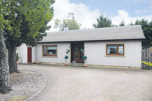 Thumbnail Detached bungalow for sale in Pinemhor, 43 Sunnyside, Inverness