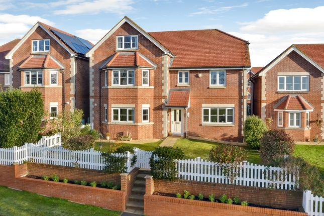 Thumbnail Detached house for sale in Five Heads Road, Catherington, Waterlooville