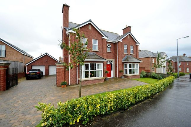 Thumbnail Detached house for sale in Millreagh, Dundonald, Belfast