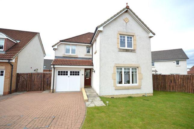 Thumbnail Detached house for sale in Mccambridge Place, Larbert