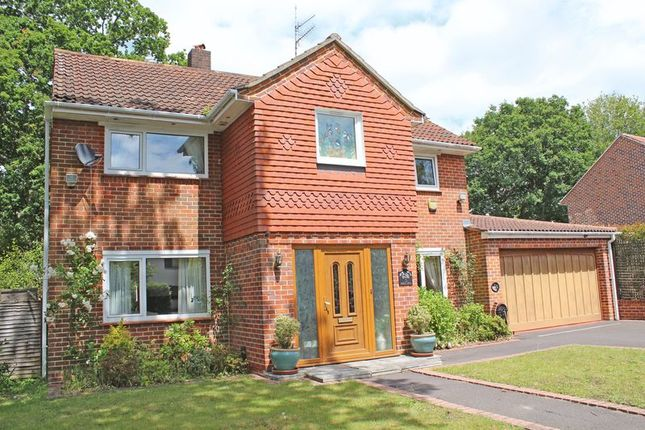 Thumbnail Detached house for sale in Holly Hill, Southampton