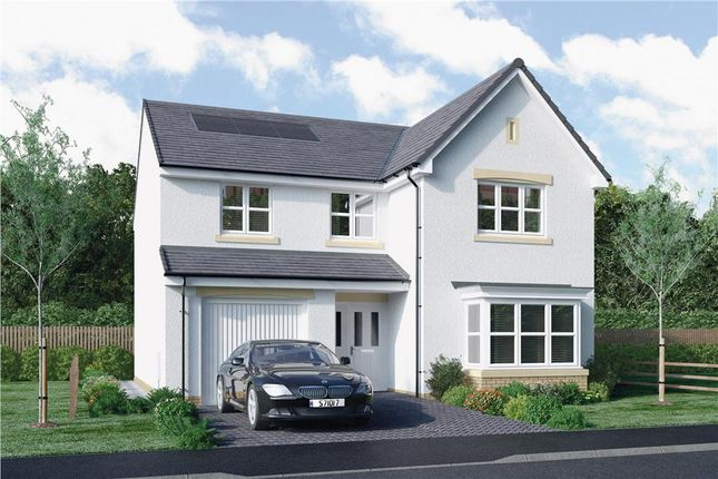 "4 bed detached house for sale in ""Mackie"" at Bellenden Grove, Dunblane FK15"