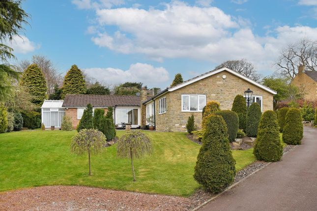 3 bed detached house for sale in Gilleyfield Avenue, Dore S17