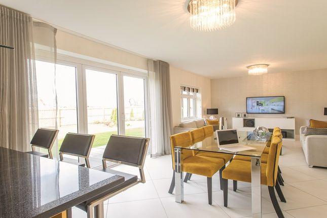 "Thumbnail Detached house for sale in ""The Kirkham"" at Glenarm Road, Wynyard Business Park, Wynyard, Billingham"