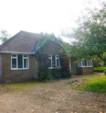 Thumbnail Detached bungalow to rent in Battle Road, Hailsham