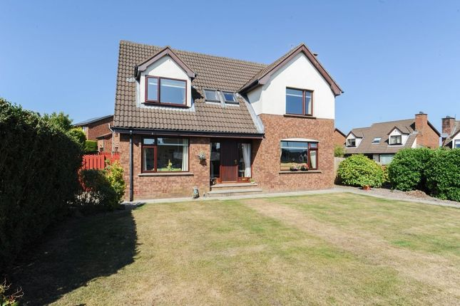 Thumbnail Detached house for sale in Glencroft Drive, Comber, Newtownards