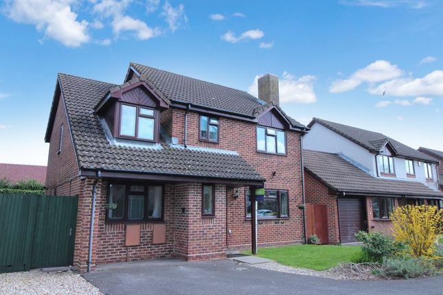 Thumbnail Detached house for sale in Laxton Close, Locksheath SO316Wn