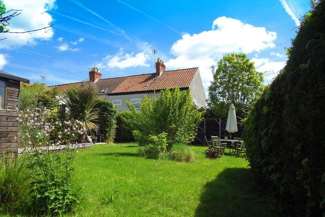 Thumbnail Cottage for sale in Rotten Marsh, Acle, Norwich