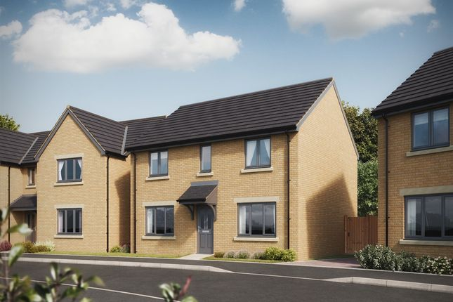 "Thumbnail Detached house for sale in ""The Chedworth"" at Warminster Road, Frome"