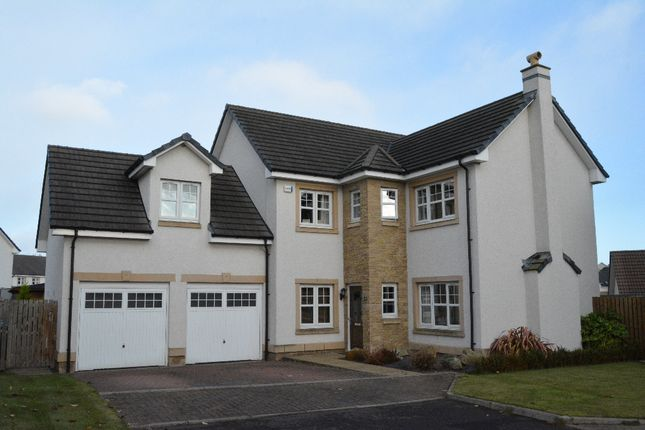 Thumbnail Detached house for sale in Cambus Avenue, Larbert