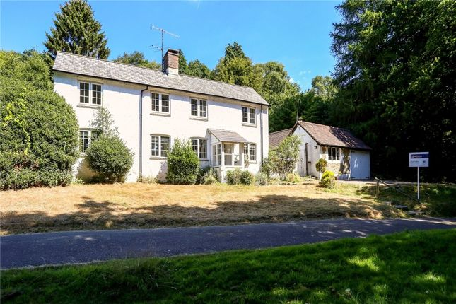 Thumbnail Detached house to rent in Hammer Vale, Haslemere