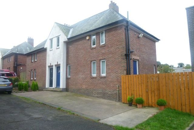 Thumbnail Semi-detached house to rent in Police Houses, Alnwick, Northumberland
