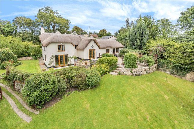 The Property of Smallridge, Axminster, Devon EX13