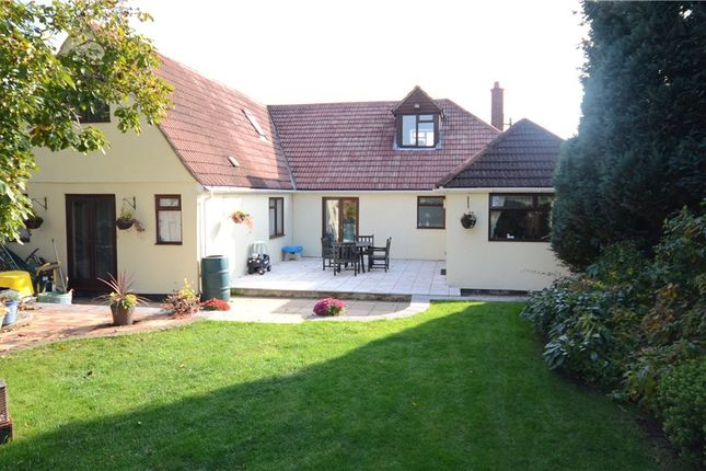 Thumbnail Detached house for sale in Elm Road, Farnham, Surrey