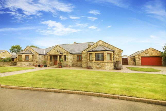 Thumbnail Detached bungalow for sale in The Croft, Longhoughton, Alnwick
