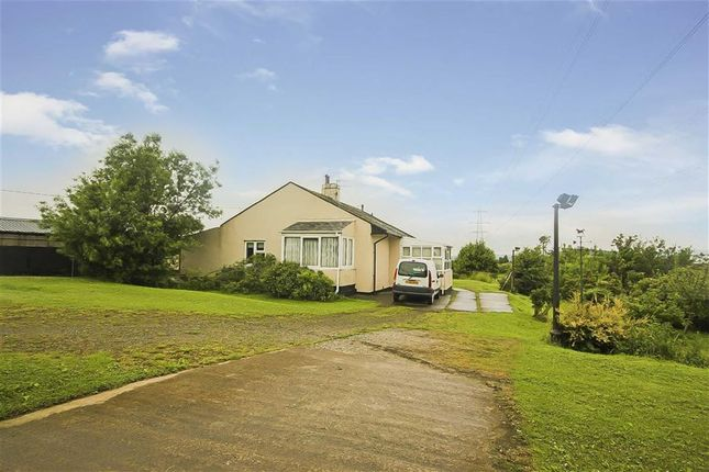 Thumbnail Equestrian property for sale in Accrington Road, Burnley, Lancashire