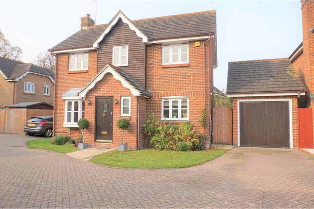 Thumbnail Detached house for sale in Waltham Close, Shenfield