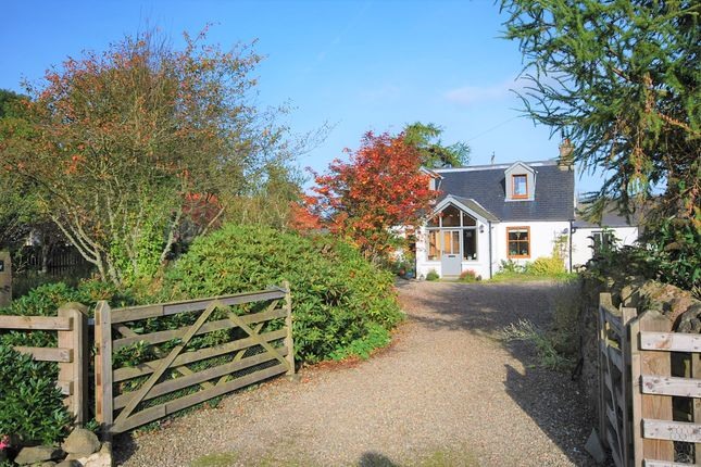 Thumbnail Link-detached house for sale in Clathy, Crieff