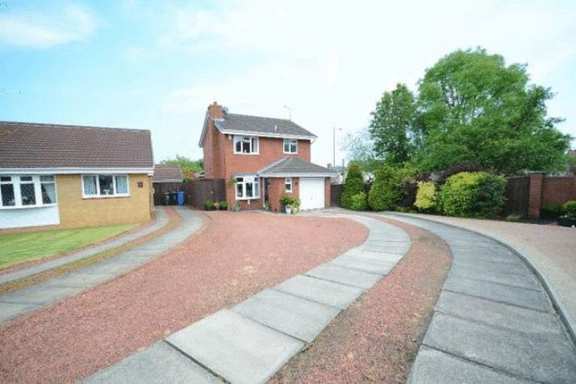 Thumbnail Detached house for sale in Blaykeston Close, Seaham