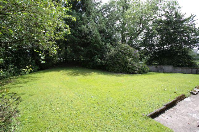 Side Garden of Moniaive, Thornhill DG3