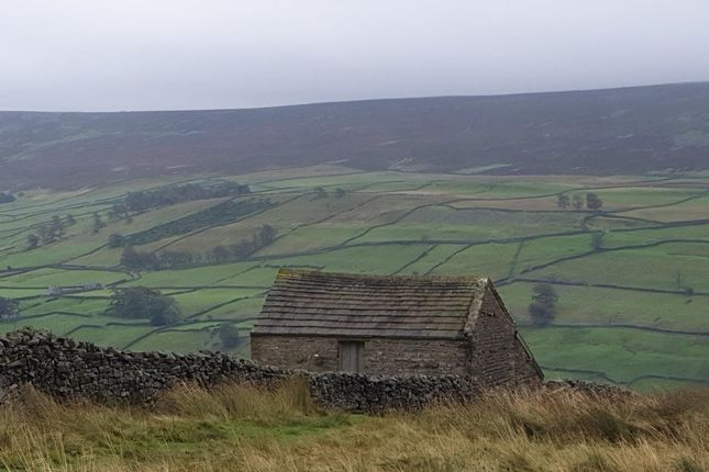 Brownberry And Cantrells Barn, Blades , Low Row, Richmond, North Yorkshire, DL11 6Px  (21)