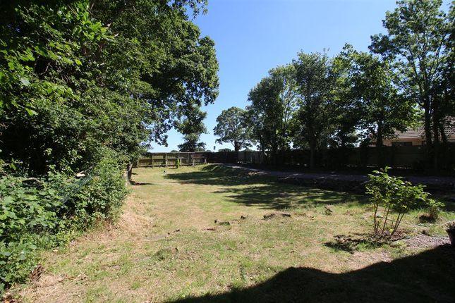 Garden of Storeton Lane, Barnston, Wirral CH61