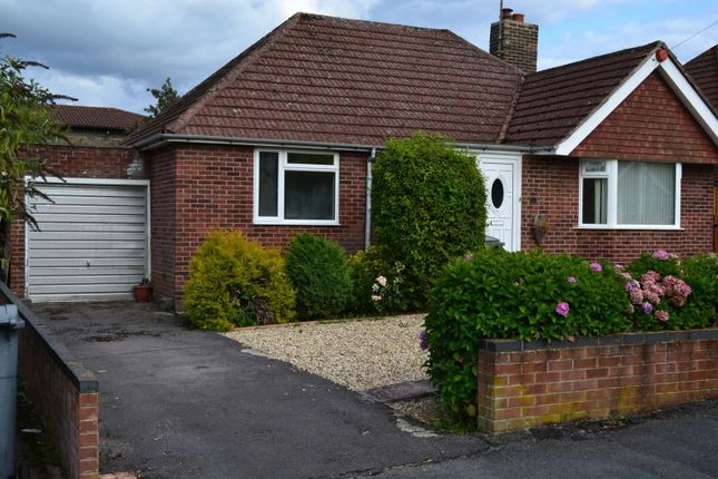 Thumbnail Detached bungalow to rent in Paddock Road, Newbury