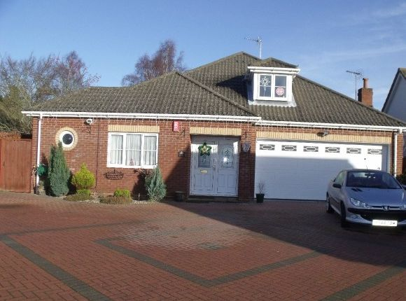 Thumbnail Detached house to rent in Felixstowe Road, Nacton, Ipswich