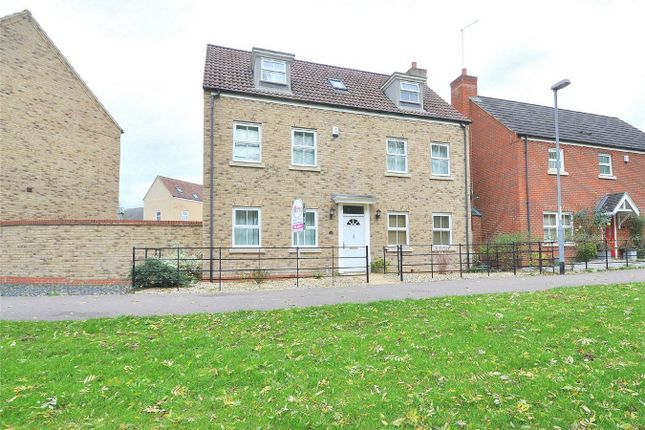 Thumbnail Detached house for sale in The Glades, Hinchingbrooke, Huntingdon, Cambridgeshire