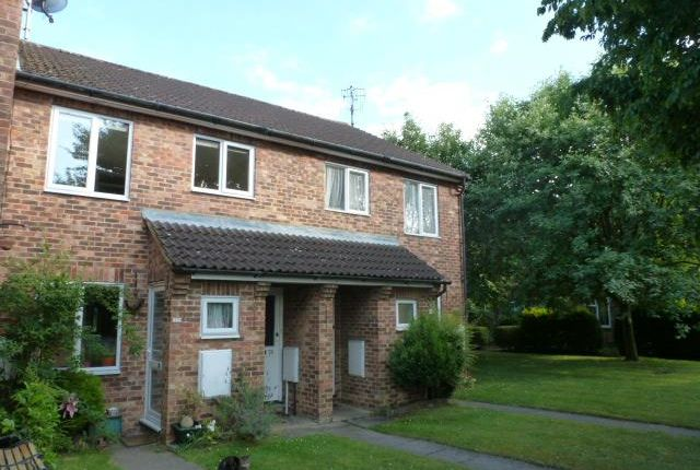 Thumbnail Maisonette to rent in The Swallows, Welwyn Garden City