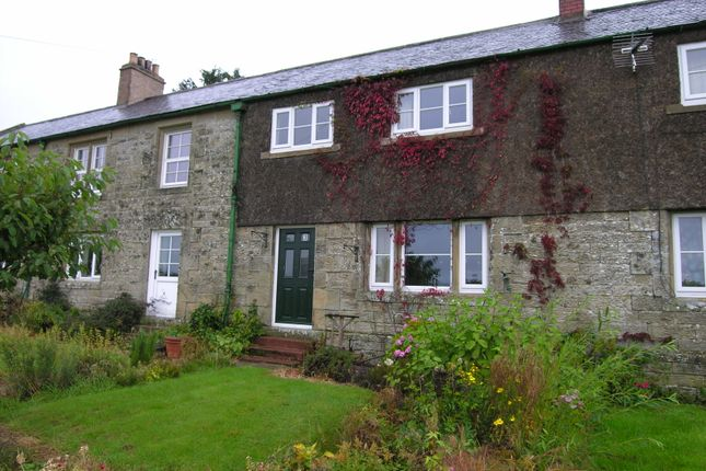 Thumbnail Cottage to rent in Elilaw Farm Cottages, Elilaw, Near Rothbury