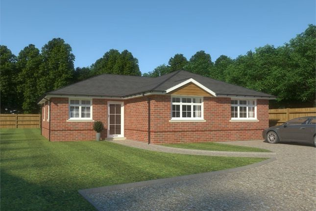 Thumbnail Detached bungalow for sale in 2A Chestnut Grove, Blandford, Dorset