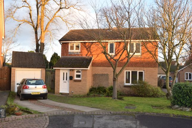 Thumbnail Detached house to rent in North Meadow, Ovingham