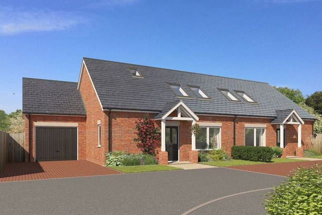 Thumbnail Semi-detached bungalow for sale in Holly Tree Court, Whitby