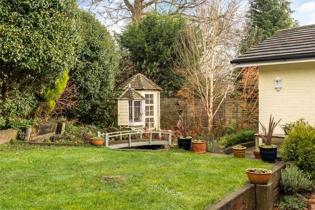 Thumbnail Detached bungalow for sale in Eliot Drive, Haslemere, Surrey