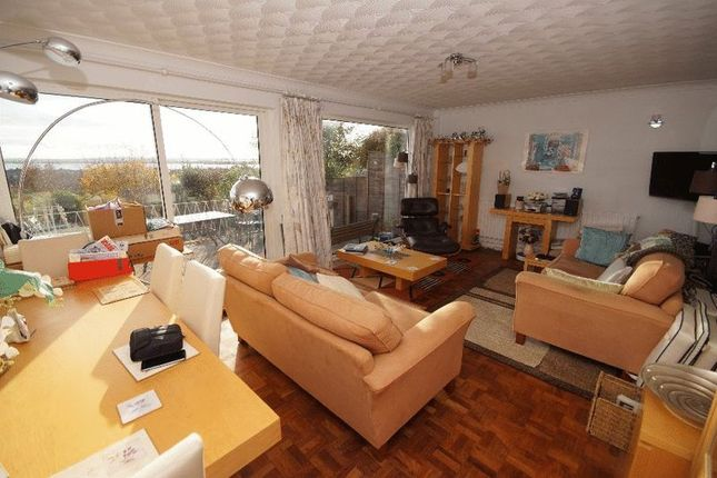 Lounge / Dining Room