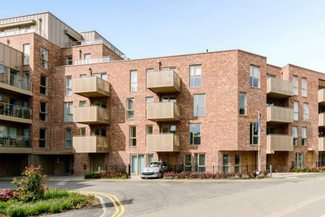 Thumbnail Flat to rent in Scholars Court, Cambridge