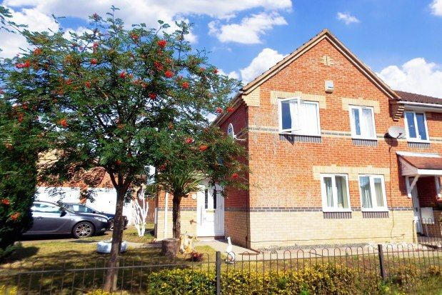 Thumbnail Semi-detached house to rent in Mallow Road, Thetford