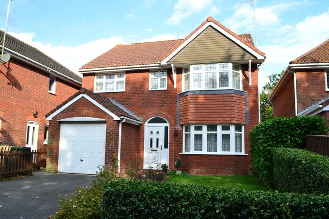 Thumbnail Detached house to rent in College Green, Yeovil