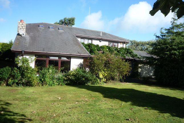 Thumbnail Detached house to rent in Boyton, Launceston