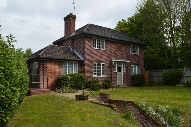 Thumbnail Property to rent in Yarmouth Road, Thorpe St. Andrew, Norwich