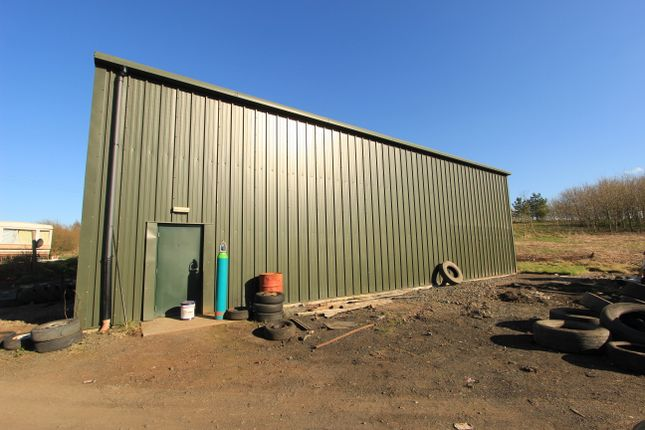 Steel Shed ((60' x 40' x 16' To Eaves)