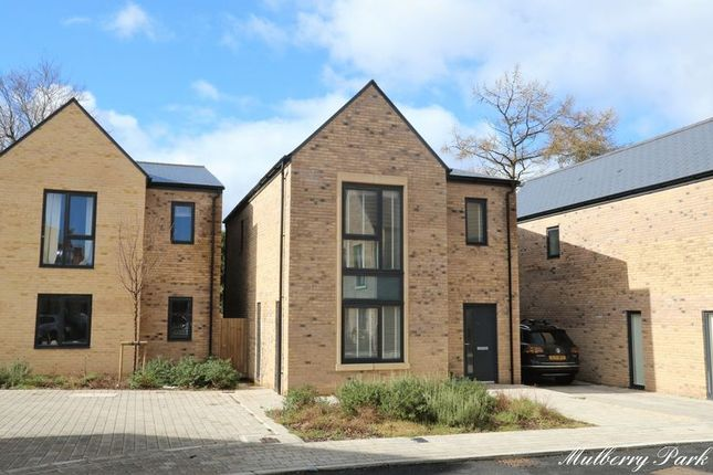 Thumbnail Detached house for sale in Chivers Street, Combe Down, Bath
