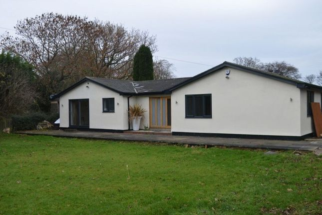Thumbnail Detached bungalow to rent in Mile Road, Widdrington, Morpeth